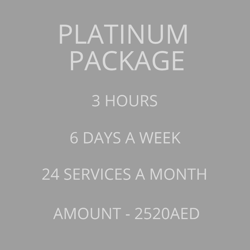 Platinum Monthly Cleaning Package
