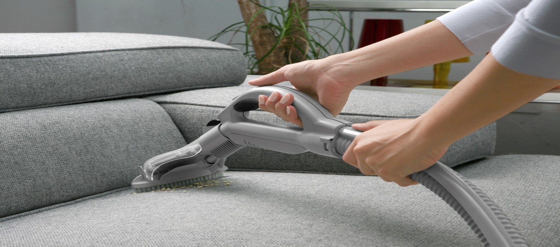 sofa-cleaning-